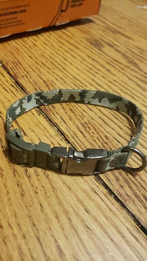Small dog collar for Sale in Durham, NC