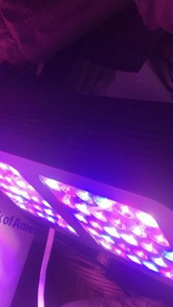 Plant Light LED indoor Plant Growth for Sale in Hollywood,  FL