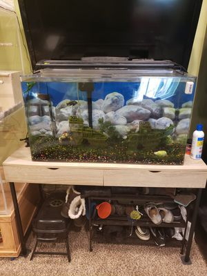 Acrylic aquarium, stand, light, filter, heater all for Sale in Woodbridge, VA