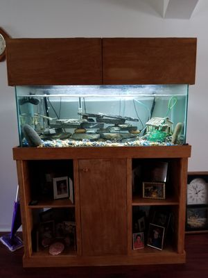 75 gal Aquarium complete for Sale in Ruskin, FL