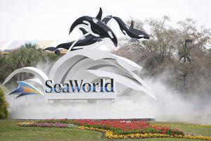 Seaworld Orlando Tickets for Sale in Tampa, FL