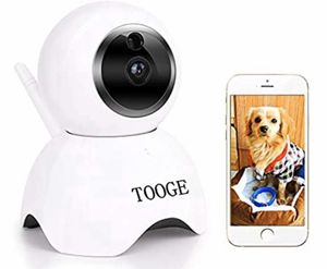 TOOGE Pet Camera for Sale in Mount Laurel Township, NJ