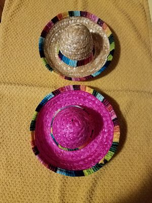 Doggie sombreros for Sale in PA, US