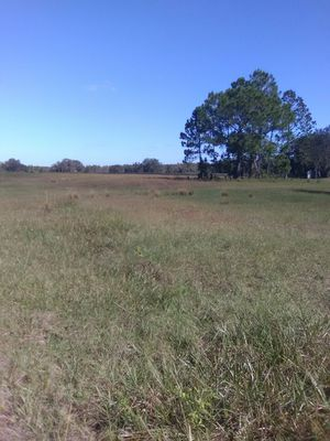 ATV ranch for Sale in Polk City, FL
