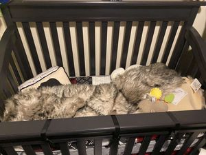 Crib set for Sale in San Diego, CA