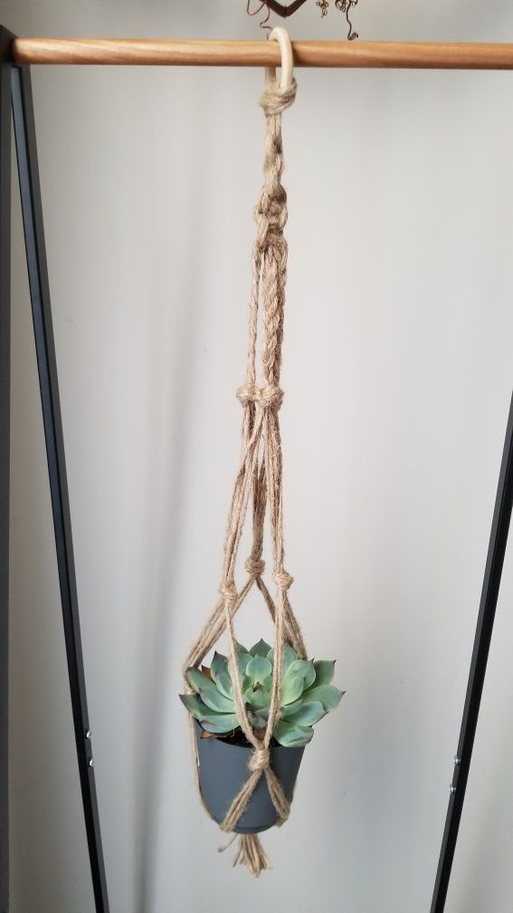 Macrame planter with available succulant