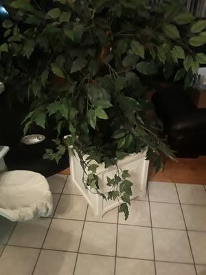 Artificial plant in white wooded pot for Sale in Warwick, RI