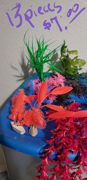Fish tank plants for Sale in Fort Myers, FL