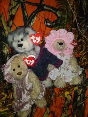 Bears for Sale in Left Hand, WV