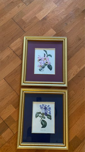 Pair of Antique Floral Paintings for Sale in Miami, FL