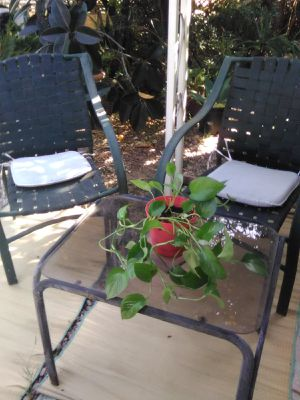 Durable outdoor chairs and glass table. for Sale in Escondido, CA
