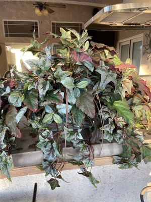 Large fake plant with metal container for Sale in Kingsburg, CA