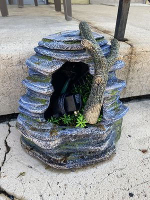 Reptile water fall for Sale in Lancaster, PA