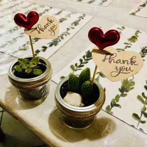 Mini succulents in mason jar for Sale in Houston, TX