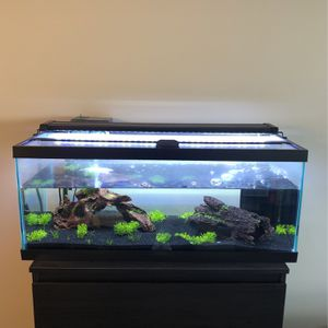 20 Gallon Long Fish Tank w/ Ornaments, Equipment & Fish for Sale in Alexandria, VA
