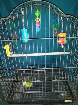 Bird Cage for Sale in Winston-Salem, NC