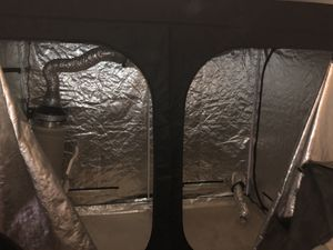 Grow tent bundle for Sale in Henderson, NV