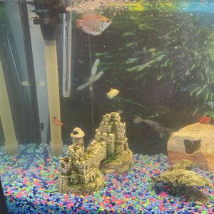 50 Gallon Fish Tank Plus Two Free Smaller Tanks (1gallon, 2.5 Gallon) for Sale in Woodbridge, VA