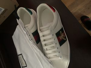 Gucci ace size 8 for Sale in Malden, MA