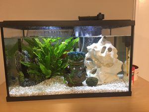 10 gallon fish tank for Sale in Des Plaines, IL