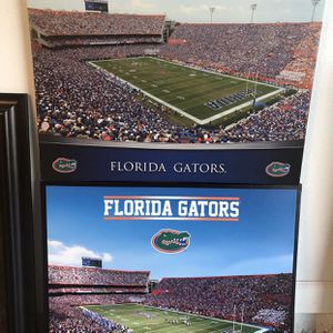 Florida Gators Gallery Wrapped Canvases for Sale in Orlando, FL
