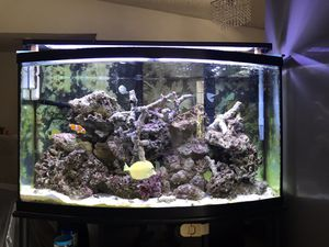 Fish Aquarium with water filter for Sale in Hemet, CA