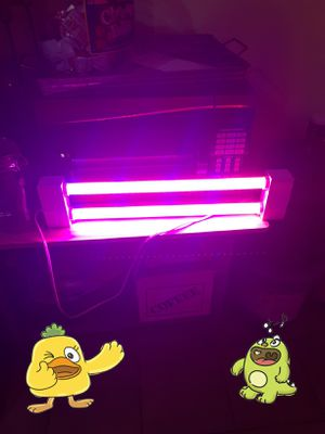 Grow light watts 19w perfect condition for Sale in Riverside, CA