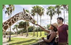 2 Busch Gardens Ticket for Sale in Zephyrhills, FL