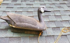 Decoy for Sale in Trappe, MD