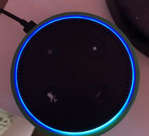 Amazon Echo Dot (kids edition) for Sale in Palmdale, CA