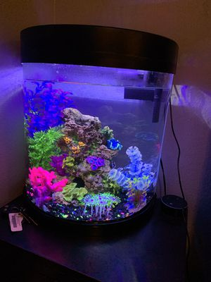 10 gallon half moon tank for Sale in Huntington Beach, CA