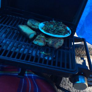 Cuisinart portable grill with 20 pound propane tank full for Sale in Seattle, WA