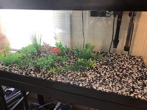 40 Gallon Fish Tank & Stand With Accessories for Sale in Detroit, MI