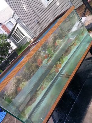55 gallon fish tank(I NEED A TMOBILE PHONE WILLING TO TRADE) for Sale in Lakewood, OH