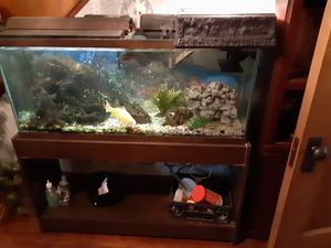 55 gallon fish tank & stand for Sale in Plymouth, CT