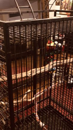 LARGE BIRD CAGE for Sale in Chandler,  AZ