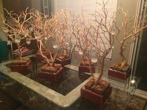 Centerpiece Manzanita Trees for Sale in Etiwanda, CA