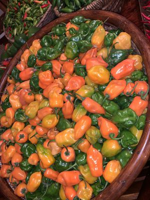 Peppers / chiles for Sale in West Chicago, IL