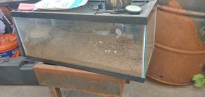 Free fish / reptile 5 gallon tank with lid and lamp. for Sale in Lodi, CA