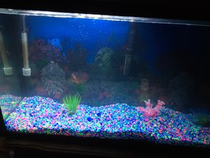 50 inch fish tank for Sale in Grove City, OH