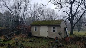 Insulated and wired shed for Sale in Silver Spring, MD