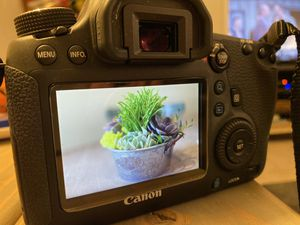 Canon EOS 6d camera, 24-105 and 50mm/1.4 lens EXTRAS for Sale in Bonney Lake, WA