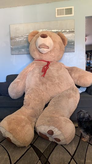 Teddy bear for Sale in Pittsburg, CA