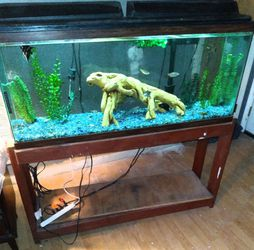 55 Gallon Aquarium Just Add Your Fish And Water Complete With Stand +++ for Sale in Gastonia,  NC