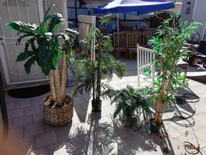 Fake plants for Sale in Long Beach, CA