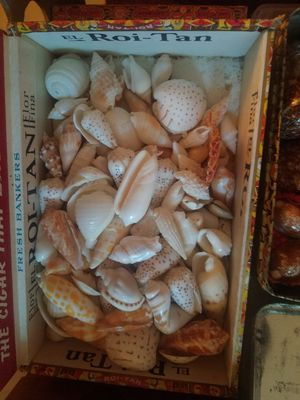Shell beads for Sale in San Rafael, CA