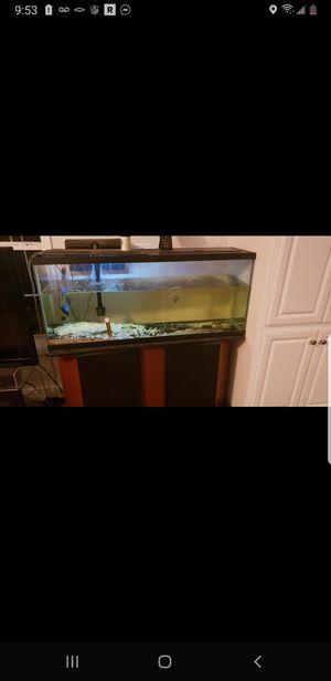 Fish tank for Sale in Milton, DE