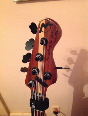Marco TFL custom jazz five string bass (USA) for Sale in Lorain, OH