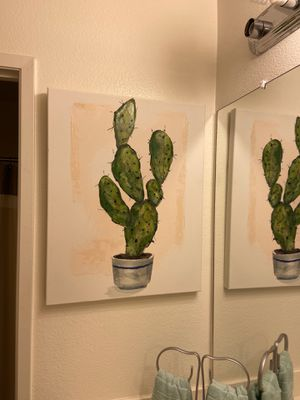 Cactus canvas for Sale in San Diego, CA