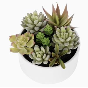 MyGift Decorative Round Faux Potted Succulents/Artificial Plant in 6 Inch Glazed White Ceramic Flower Pot for Sale in Baltimore, MD